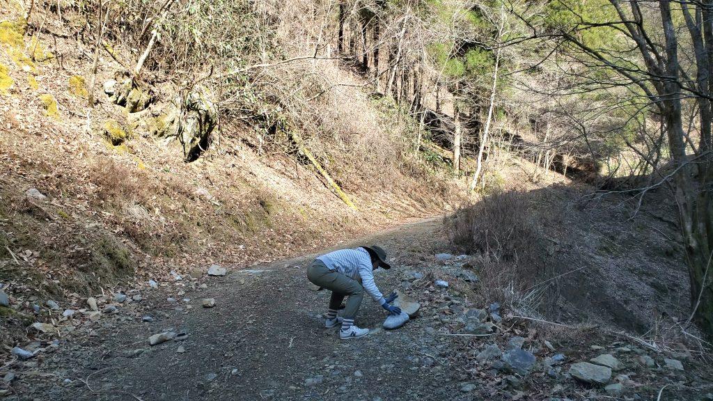 山の仕事に挑戦 1